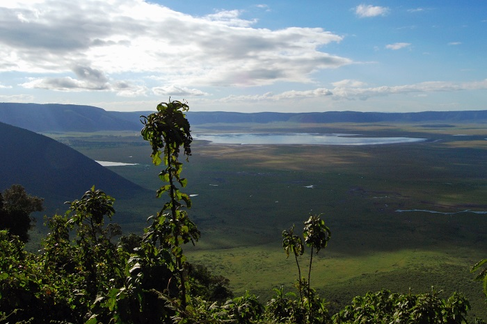 1 Ngorongoro