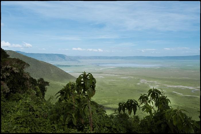 2 Ngorongoro