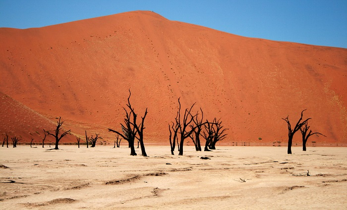 3 Namib Desert