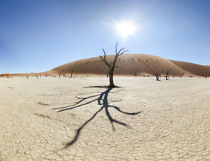 4 Namib Desert