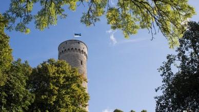 7 Hermann Tower