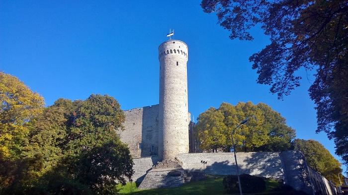 8 Hermann Tower