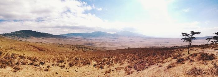8 Ngorongoro