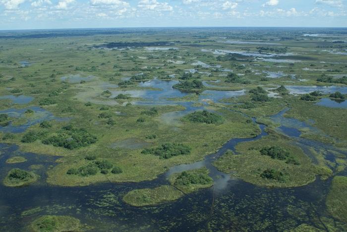 1 Okavango