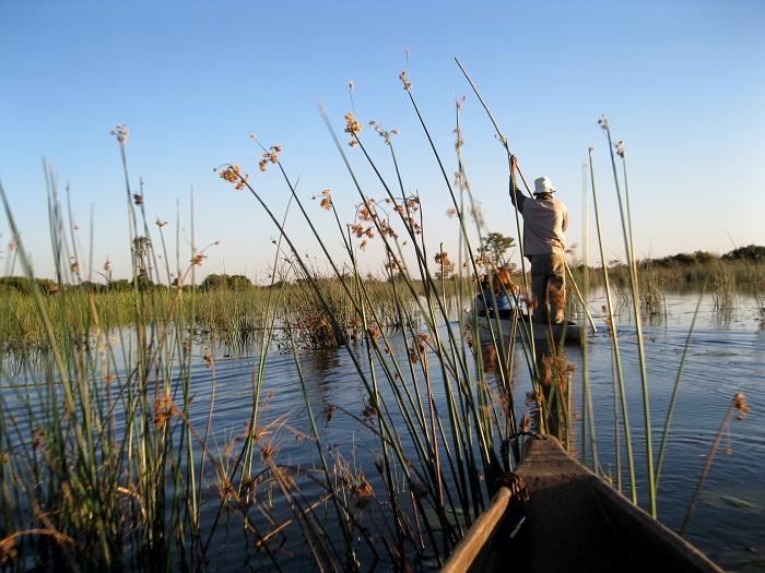 17 Okavango