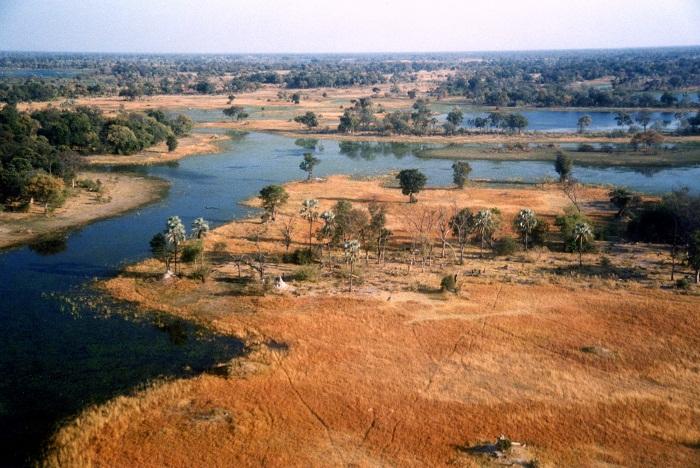 3 Okavango