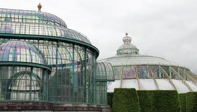 6 Laeken
