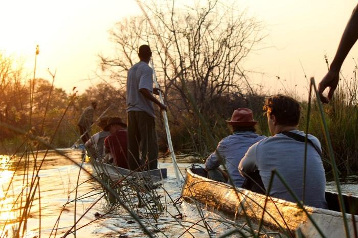 7 Okavango