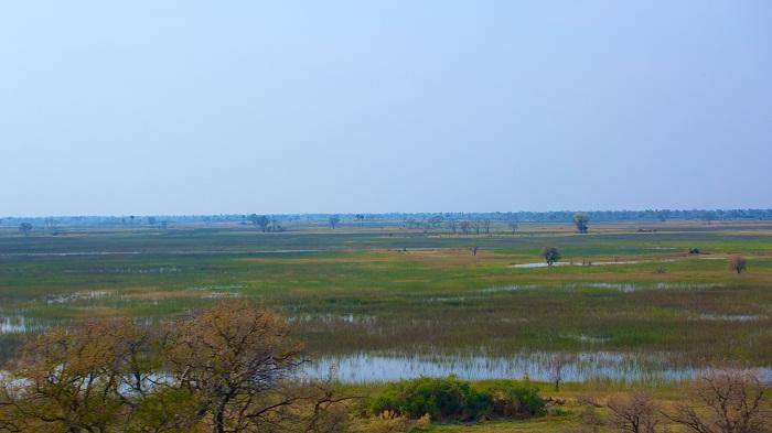 8 Okavango