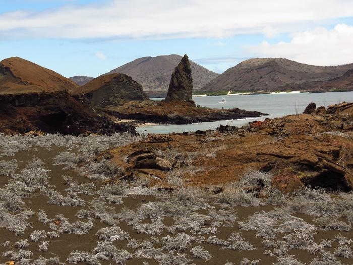 7 Galapagos