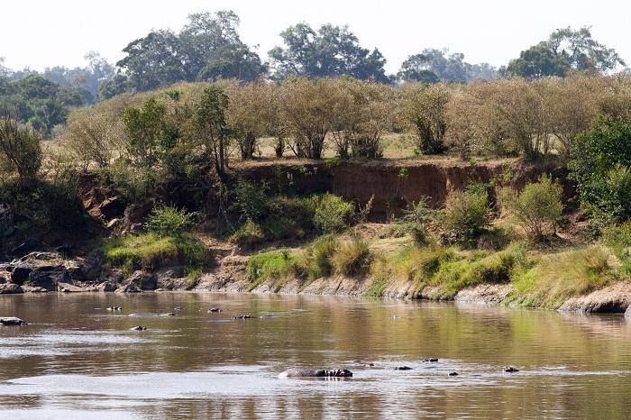 15 Maasai Mara