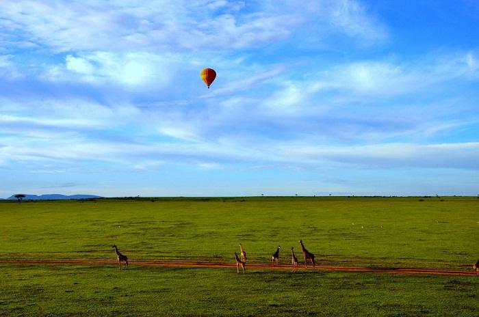 2 Maasai Mara