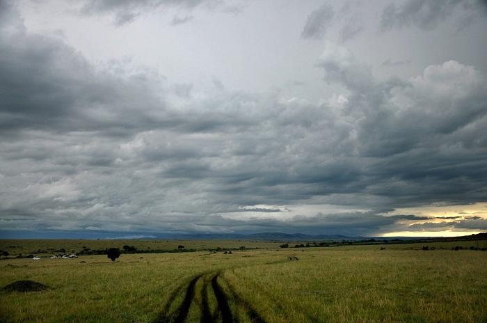 4 Maasai Mara