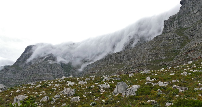 4 Table Mountain