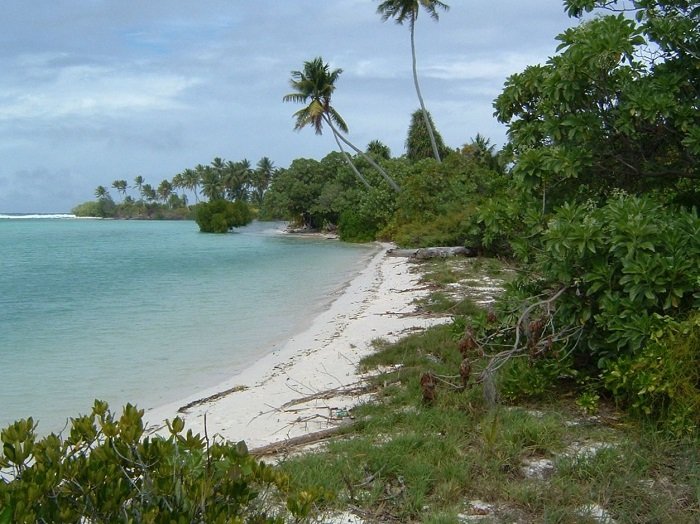 5 Tarawa
