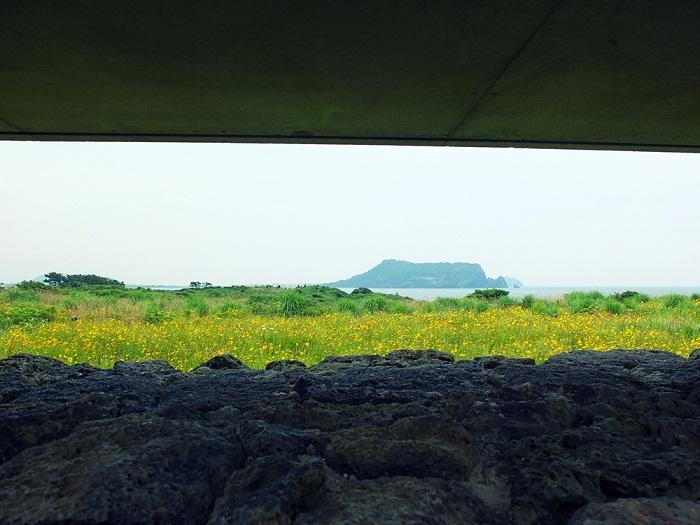 9 Jeju