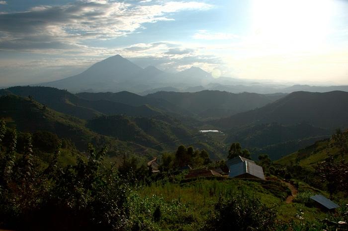 3 Virunga