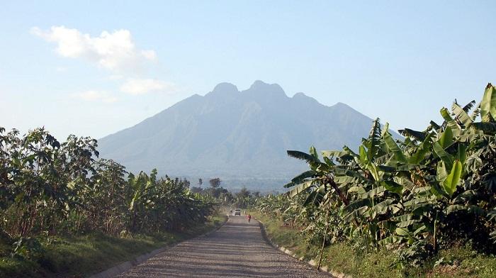 6 Virunga