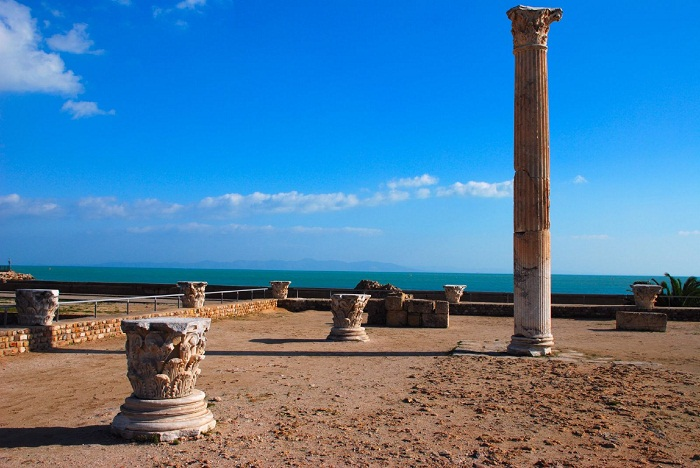 8 Carthage