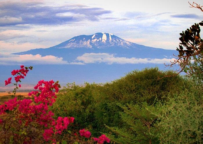 8 Kilimanjaro