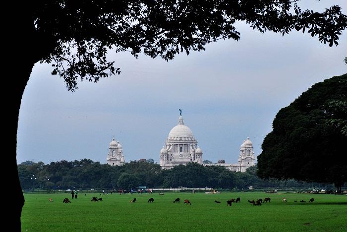 4 Victoria India