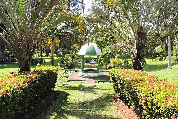 6 Vincent Gardens