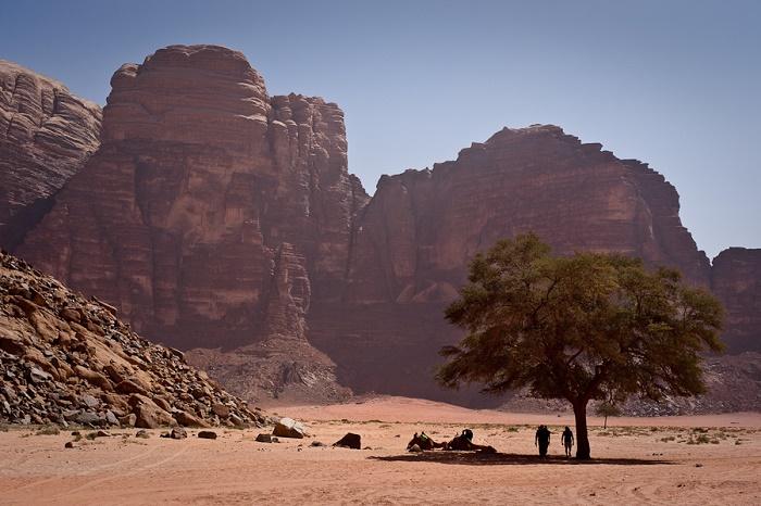 9 Wadi Rum