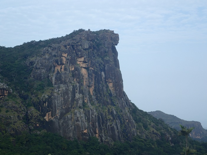 1 Loura Guinea