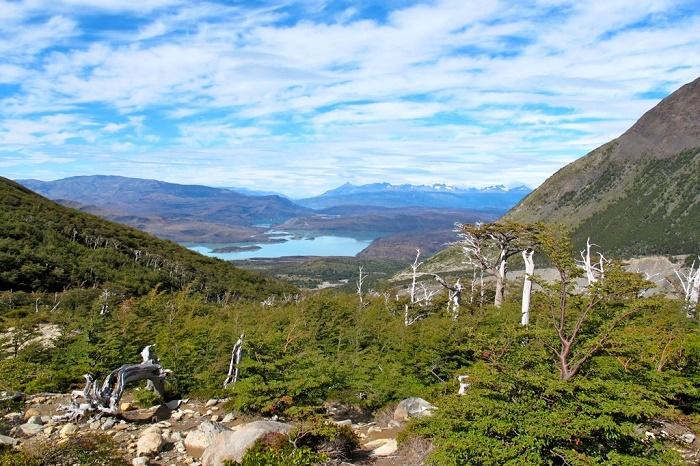 13 Torres Paine