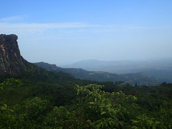 2 Loura Guinea