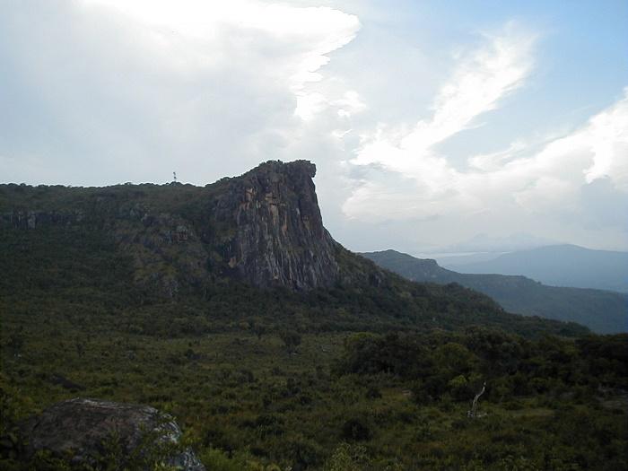 3 Loura Guinea