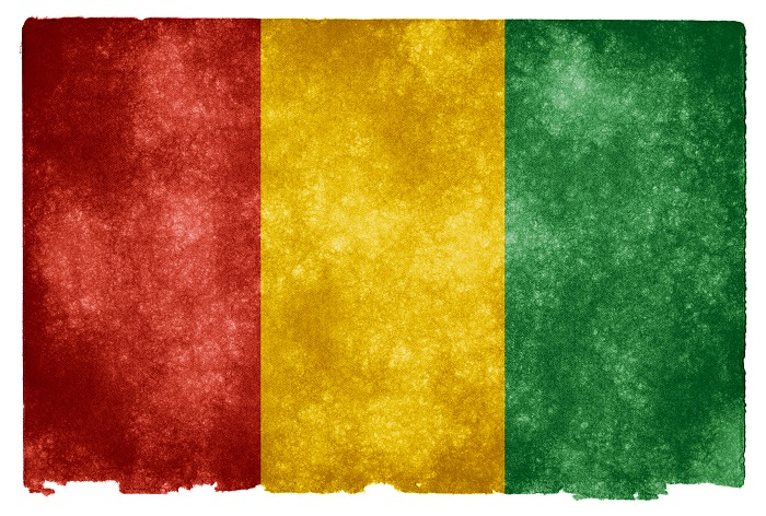 4 Loura Guinea