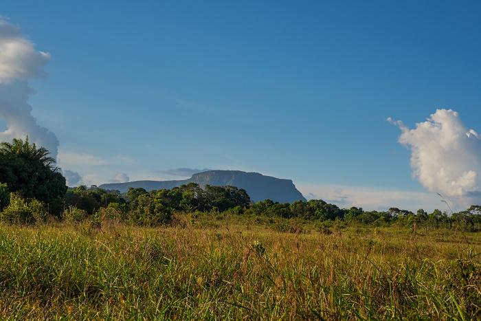 1 TafelbergS