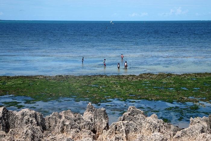 10 Island Mozambique
