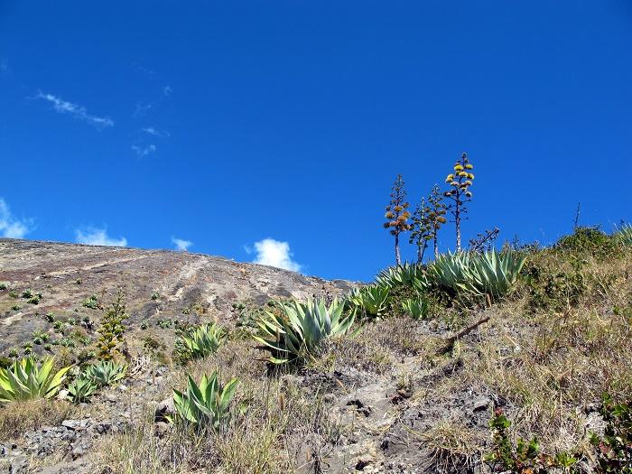 3 Ana Volcano