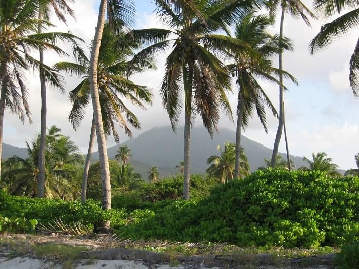 3 Nevis