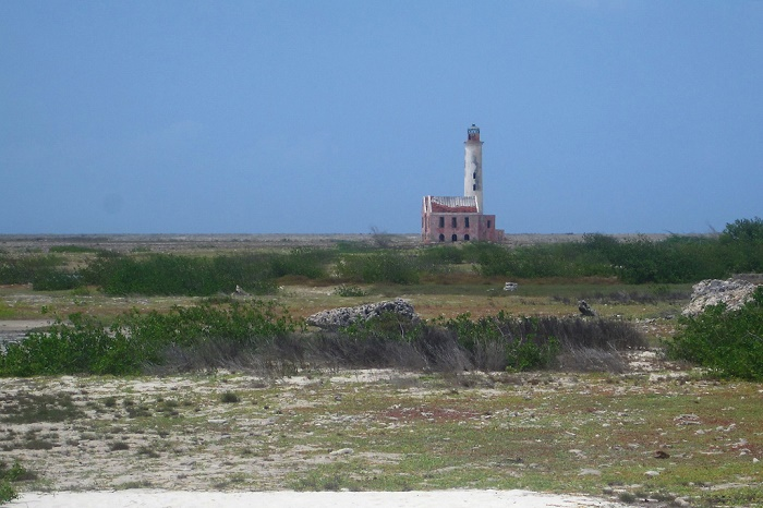 6 Small Curacao