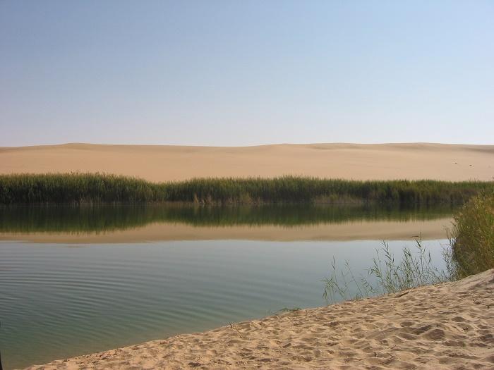 1 Siwa Oasis