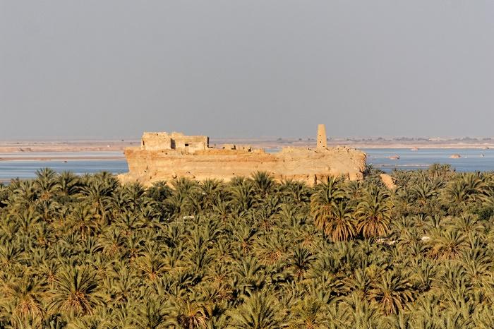2 Siwa Oasis