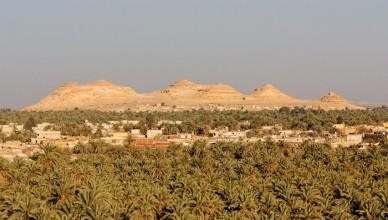 3 Siwa Oasis