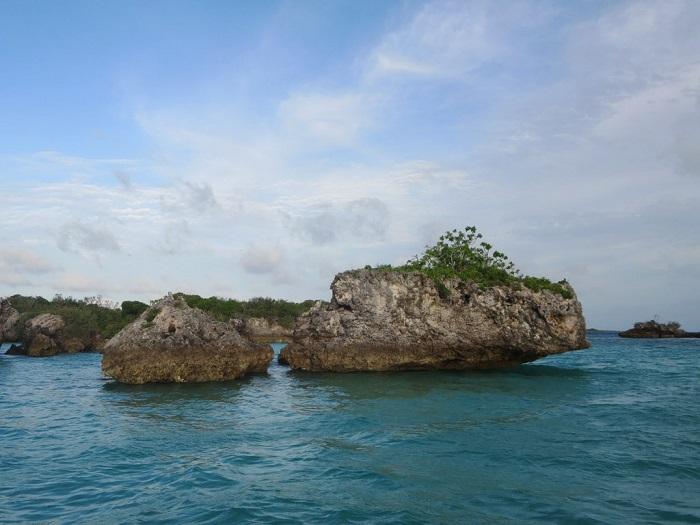 1 Aldabra