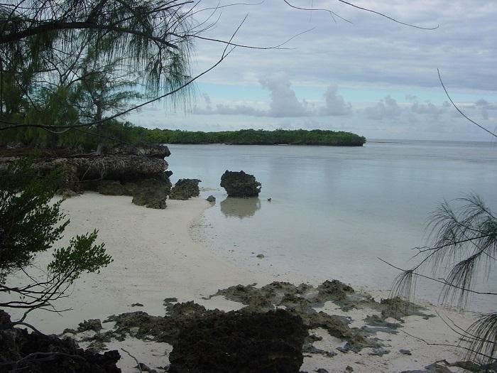 15 Aldabra