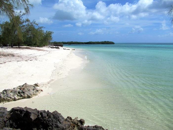 5 Aldabra
