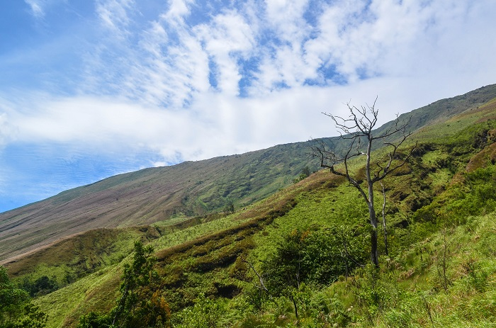 3 Mount Cameroon