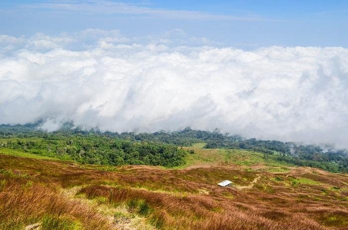 4 Mount Cameroon