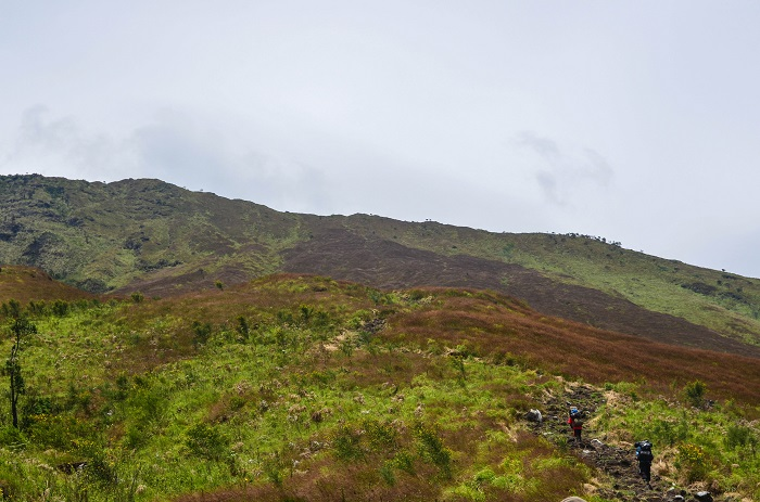 6 Mount Cameroon