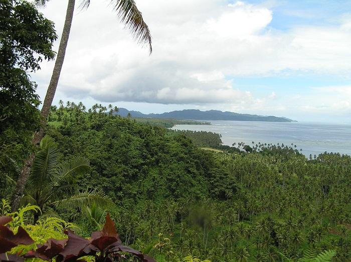 4 Bouma Fiji