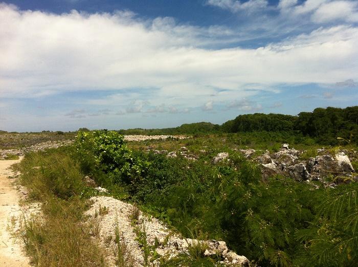 11 Nauru Mines