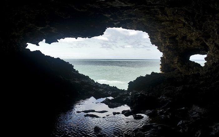 6 Flower Cave