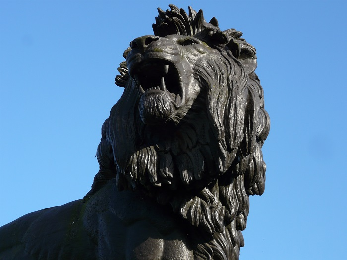 6 Maiwand Lion